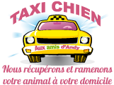 Taxi-chien
